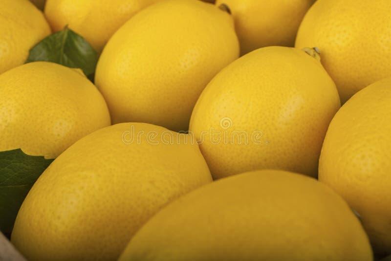 Uma série de limão saudável imagens de stock royalty free