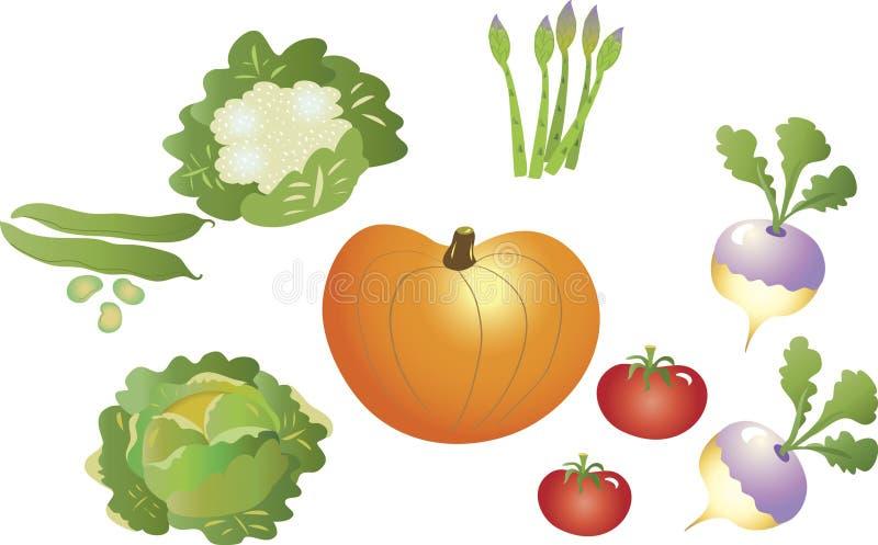 Uma seleção dos vegetais ilustração royalty free