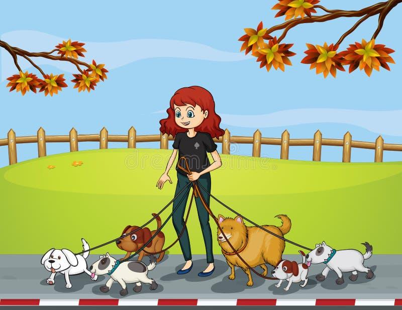 Uma senhora no parque que dá uma volta com seus animais de estimação ilustração royalty free