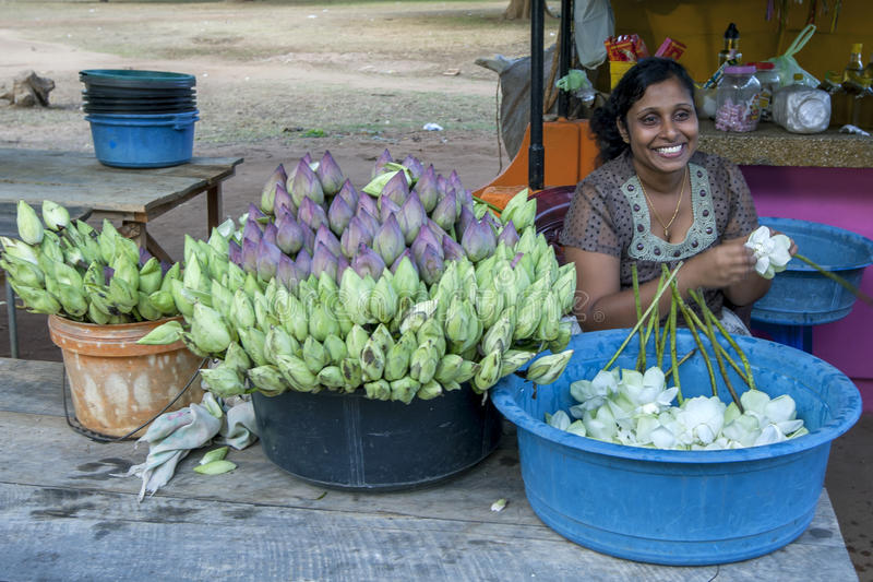 Uma senhora que vende flores fora do templo de Kataragama em Sri Lanka do sul imagens de stock