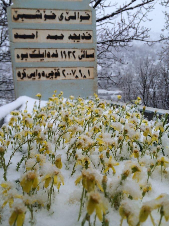 Uma sepultura sob a neve imagem de stock
