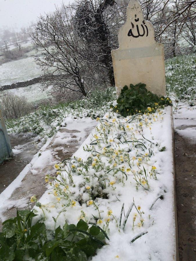Uma sepultura sob a neve imagem de stock royalty free