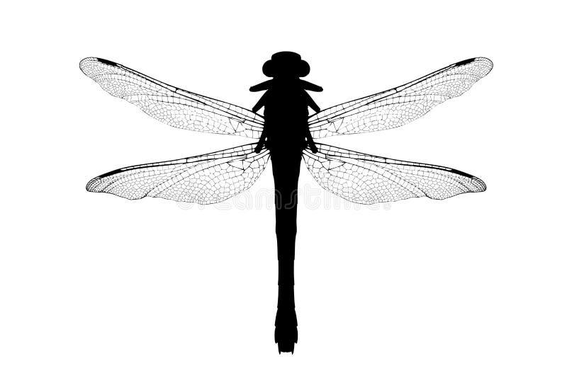 Uma silhueta de uma libélula ilustração do vetor