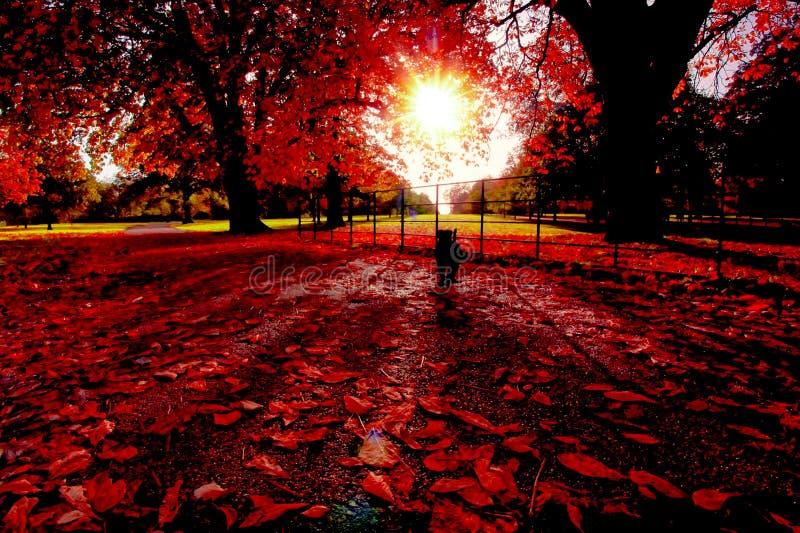 Uma tarde do outono em Londres imagem de stock