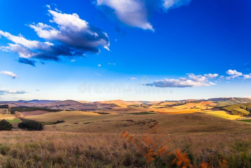 Uma tarde fria e ventosa no vale de Dargle imagens de stock royalty free