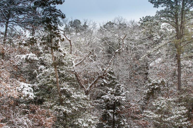 Uma tarde nevado foto de stock royalty free