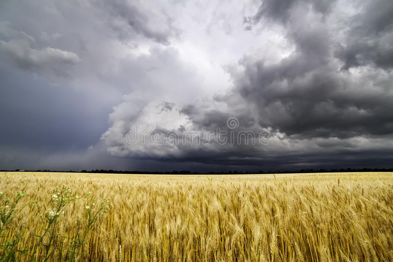 Uma tempestade do verão rola sobre os campos de Missouri fotografia de stock