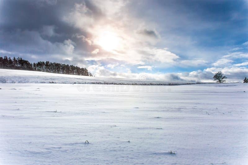 Uma terra coberto de neve estéril com algumas árvores vistas aqui e ali fotografia de stock royalty free