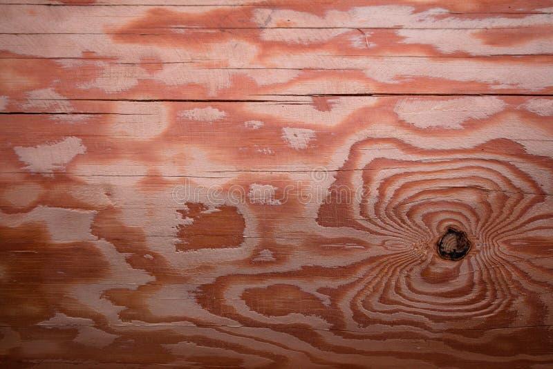 Uma textura bonita de um log de planeamento feito da madeira de pinho imagem de stock royalty free