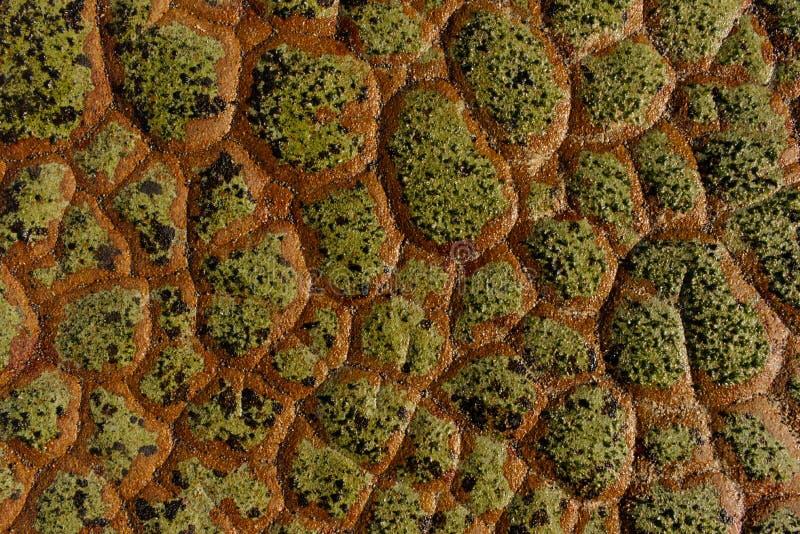 Uma textura natural da rocha como a escala do dragão foto de stock