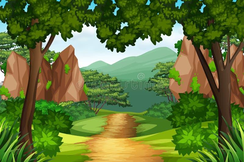Uma trilha à floresta ilustração royalty free