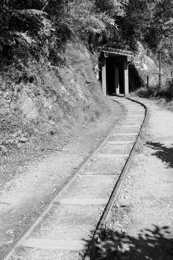 Uma trilha de estrada de ferro que entra em um túnel de madeira pequeno foto de stock royalty free