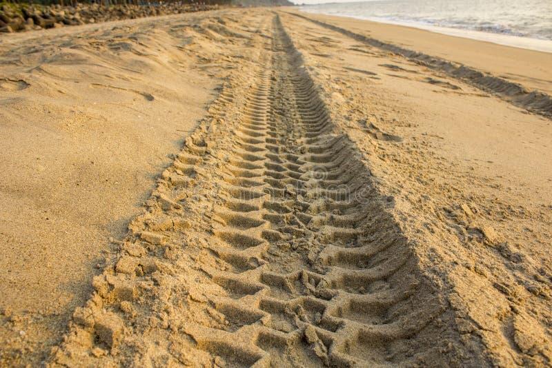 Uma trilha do ire na areia amarela na praia do oceano fotos de stock