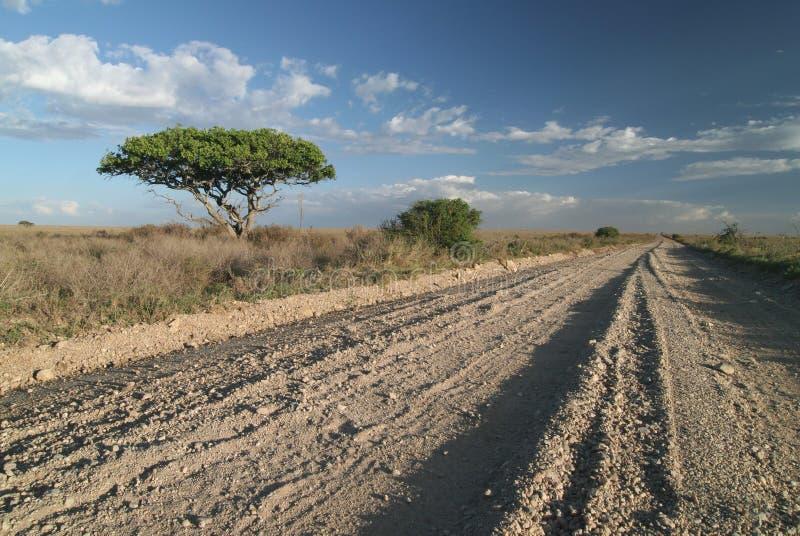 Uma trilha só da estrada no savanna. imagens de stock royalty free