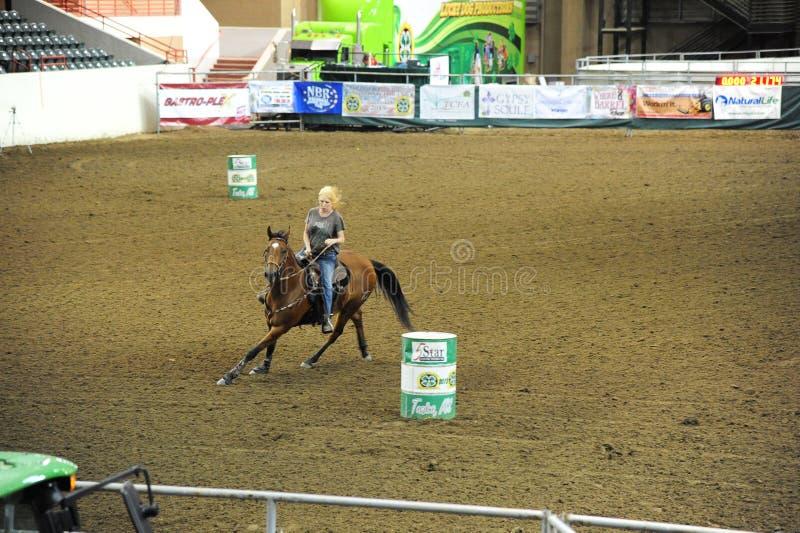 Uma vaqueira pratica dentro do centro da arena e da exposição da túnica, túnica Mississippi imagem de stock