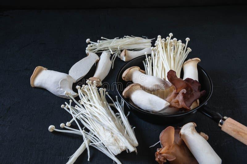 Uma variedade de cogumelos frescos em placas de madeira foto de stock royalty free