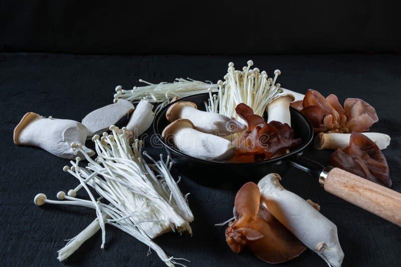 Uma variedade de cogumelos frescos em placas de madeira foto de stock