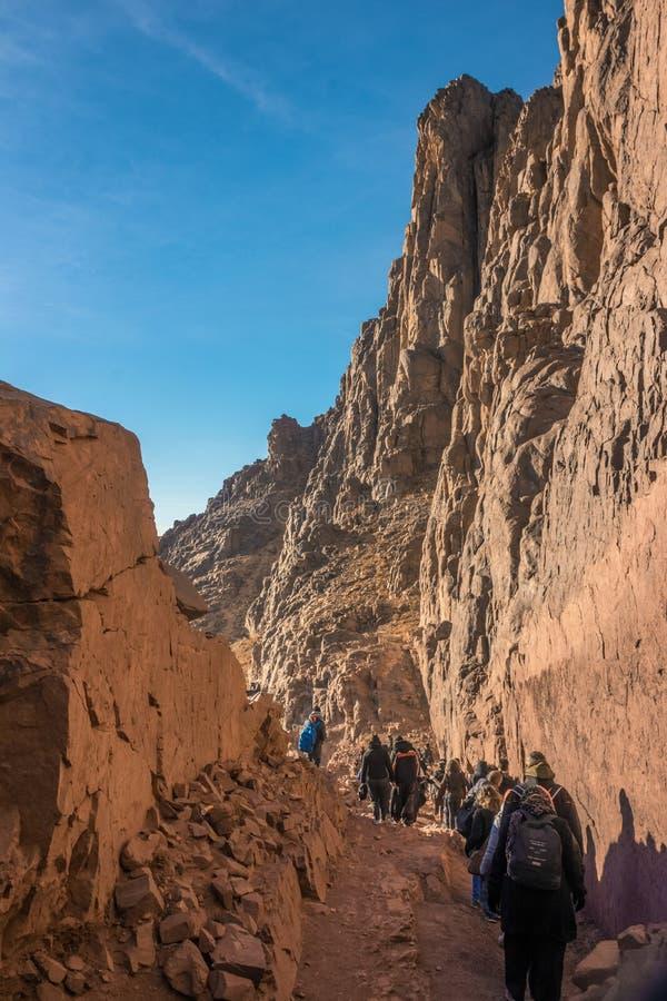 Uma viagem ao deserto de sinai foto de stock