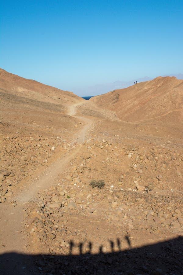 Uma viagem ao deserto de sinai fotos de stock