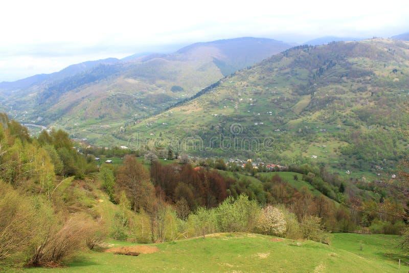 Uma vista agrad?vel de montes Carpathian fotos de stock