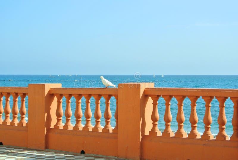 Uma vista ao mar Mediterrâneo de um passeio da margem da praia de Benalmadena e de uma pomba branca no forefround imagens de stock