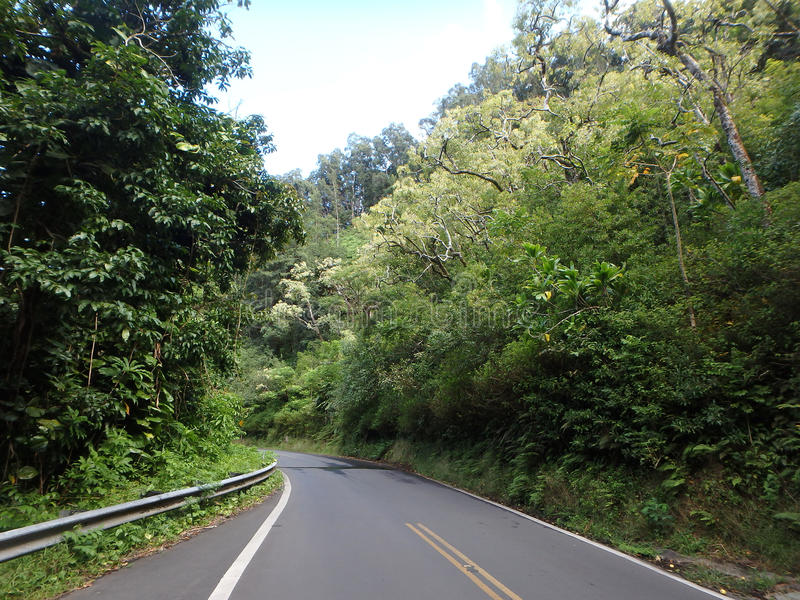 Uma vista bonita da estrada a Hana da ilha de Maui fotografia de stock