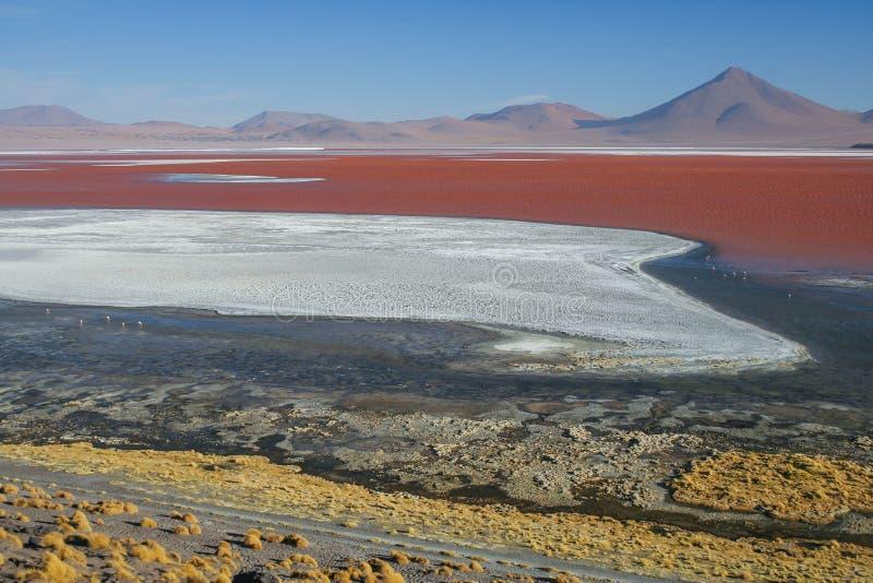 Uma vista do deserto de sal na Bolívia - lagoa Colorado imagem de stock royalty free