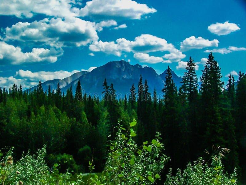 Uma vista do lado da via pública larga e urbanizada do vale da curva, Banff P nacional imagem de stock