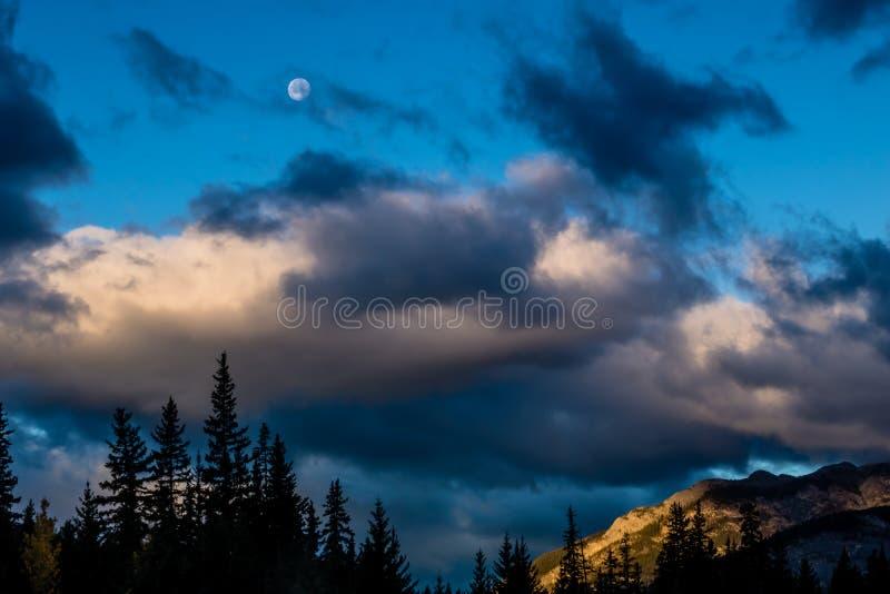 Uma vista do lado da via pública larga e urbanizada do vale da curva, Banff P nacional imagem de stock royalty free