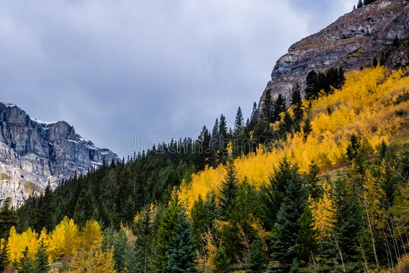 Uma vista do lado da via pública larga e urbanizada do vale da curva, Banff P nacional foto de stock royalty free