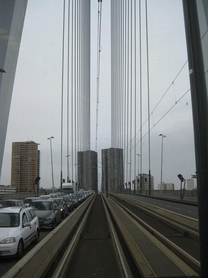 Uma vista do meio da ponte de Erasmusbrug em Rotterdam, os Países Baixos foto de stock royalty free