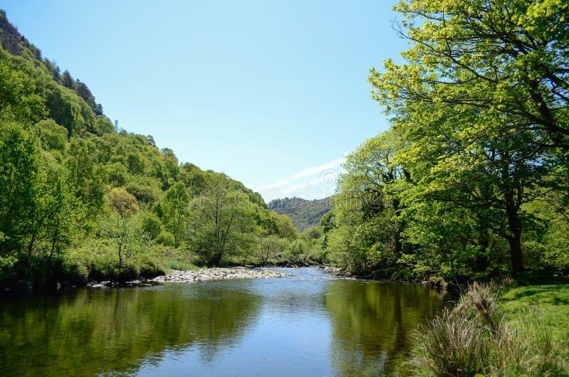 Uma vista ensolarado cênico ao longo de um rio calmo entre árvores verdes e sob o céu azul imagens de stock