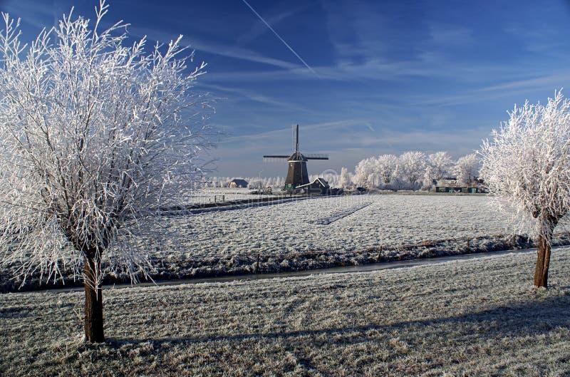 Uma vista impressionante da névoa congelada no moinho de vento e na árvore fotos de stock royalty free