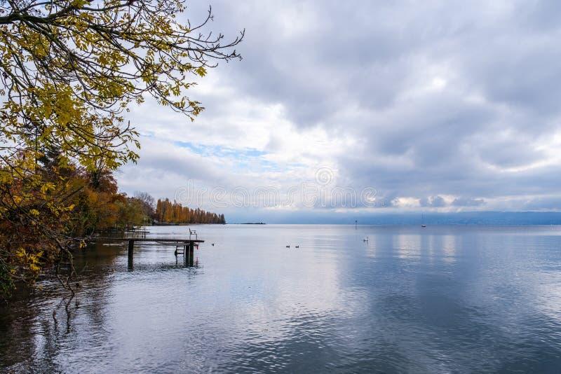 Uma vista no lago Genebra de Preverenges, Suíça fotos de stock royalty free