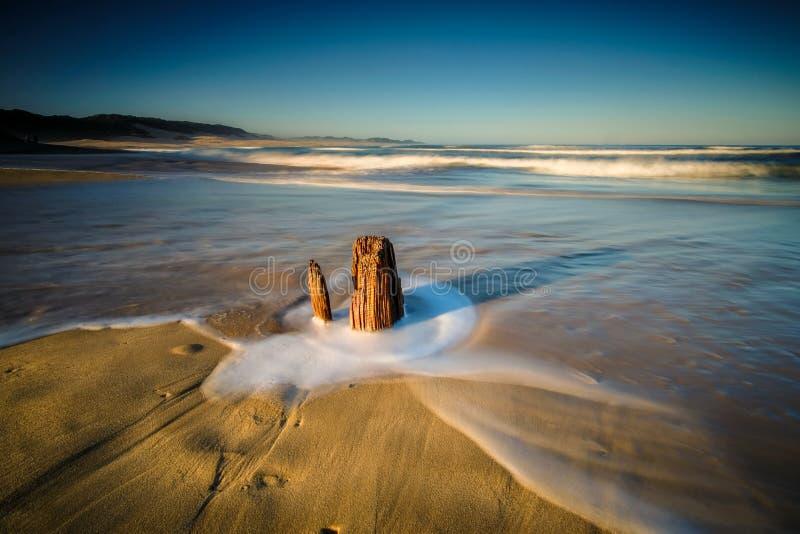 Uma vista panorâmica da praia e do oceano fotografia de stock royalty free
