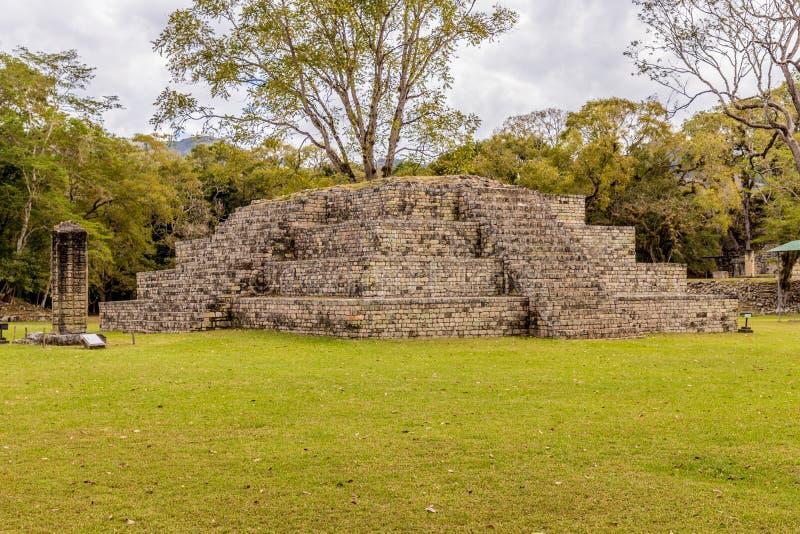 Uma vista típica em ruínas de Copan nas Honduras fotografia de stock royalty free