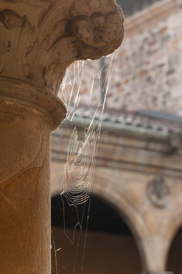Uma Web de aranha no colunas antigas fotografia de stock