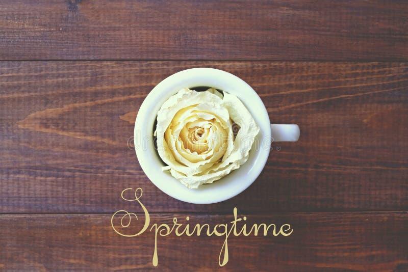 Uma xícara de café e uma rosa branca, mola fotografia de stock royalty free