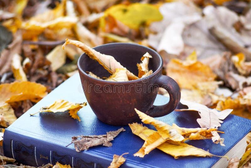Uma x?cara de caf? e umas folhas marrons secas em um livro no forest_ do outono imagem de stock royalty free