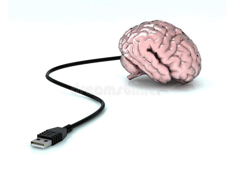 Uman hjärna för Usb royaltyfri illustrationer
