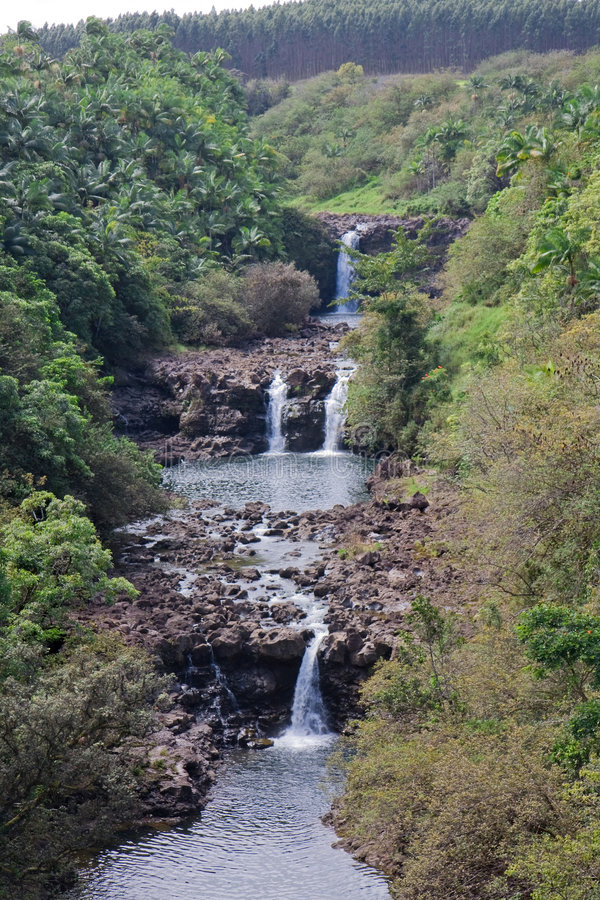 Umauma Falls at World Botanical Gardens, Hawaii. Vertical landscape of three-tiered Umauma Falls at World Botanical Gardens, Hawaii royalty free stock images