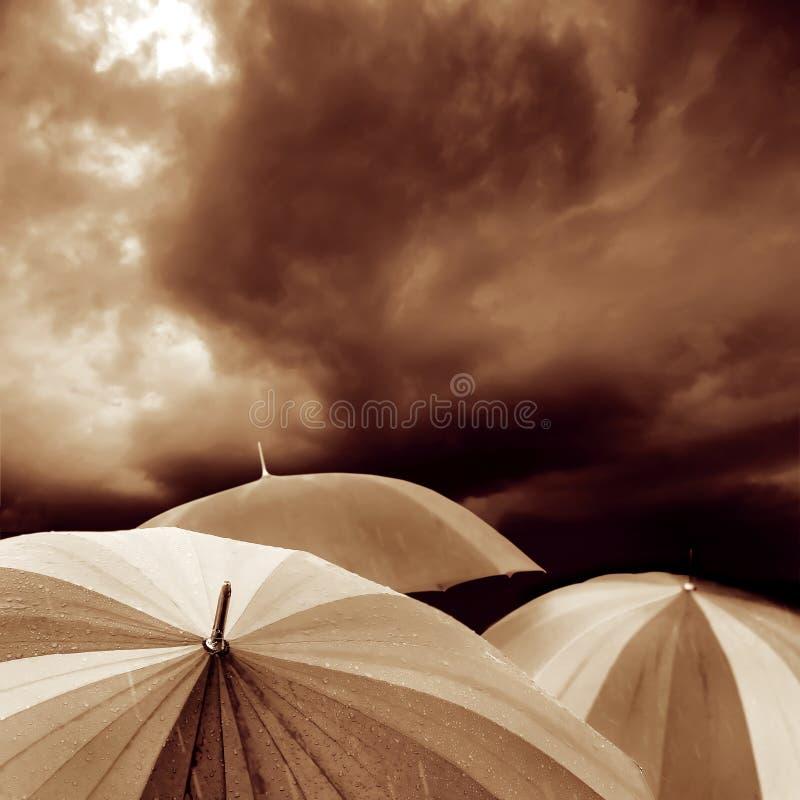 Free Umbrella Stock Photography - 10203702