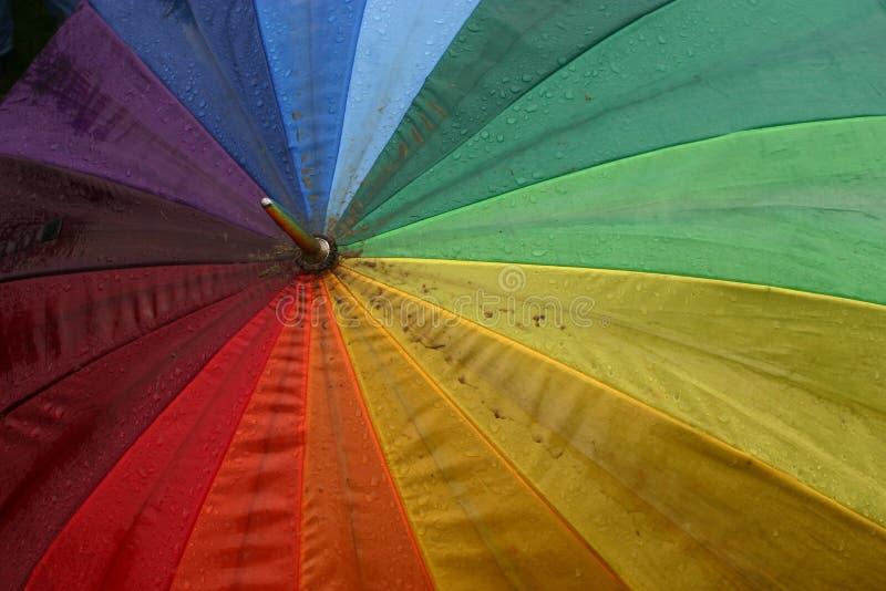 umbrella obrazy stock