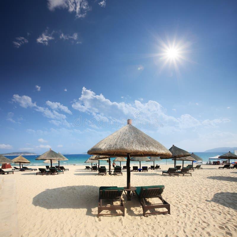 Download Umbrella on beach stock image. Image of sunshine, holiday - 27598259
