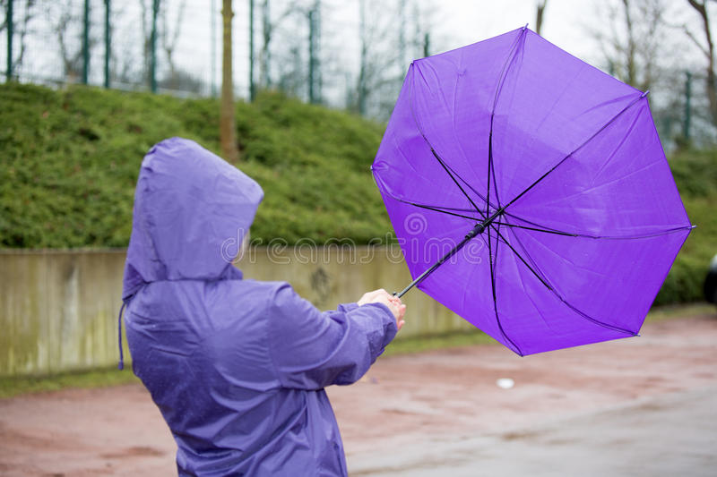 Umbrella fight in the wind stock images