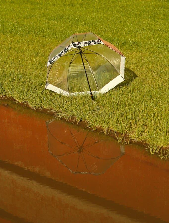 Umbrella on grass royalty free stock photo