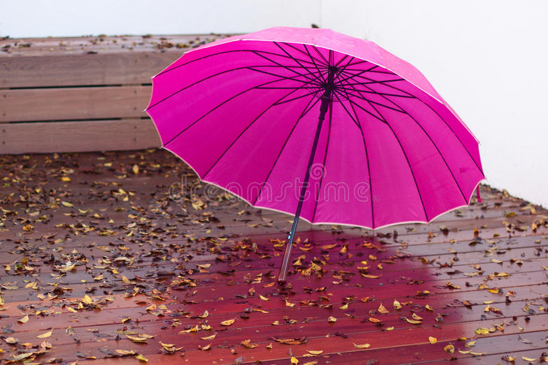 Umbrella after the rain stock photography