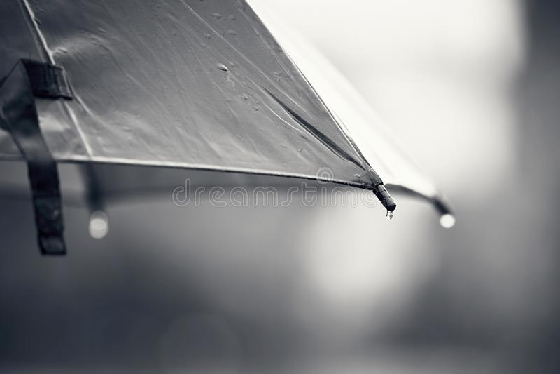 Umbrella during rain stock photos