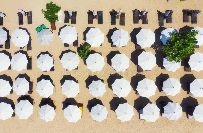 Umbrellas as a background from top view. Beach and sand background from top view. Summer seascape from air. Bali island, Indonesia. Travel - image royalty free stock photo