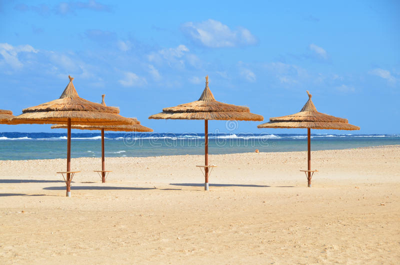 Umbrellas on sandy beach at hotel in Marsa Alam - Egypt. Beautiful beach at hotel in Egypt Marsa Alam stock photography